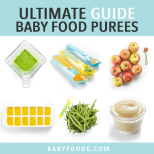 Graphic for post - ultimate guide baby food purees. Images are in a grid of fresh produce, jars of puree, spoons with puree resting inside and a blender full of green puree.