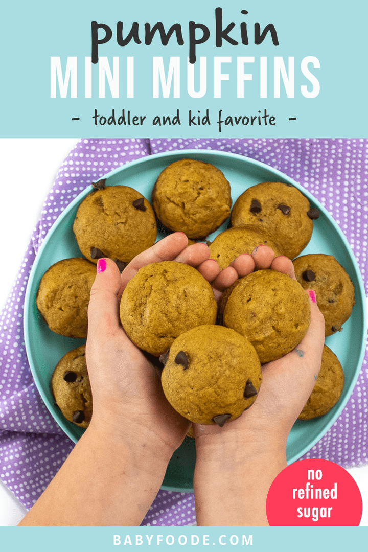 Graphic for post- pumpkin mini muffins - toddler and kid favorite. Images of teal plate with small kids hands holding mini muffins.