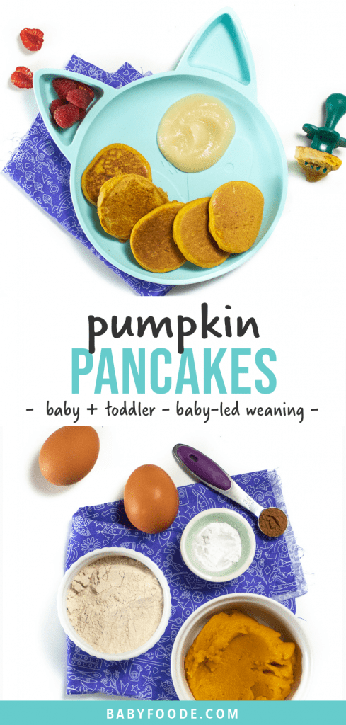 Graphic for post - pumpkin pancakes for baby and toddlers - baby-led weaning. Images are of a kids panda plate filled with small pumpkin pancakes along with an image of a spread of 5 ingredients for recipe.