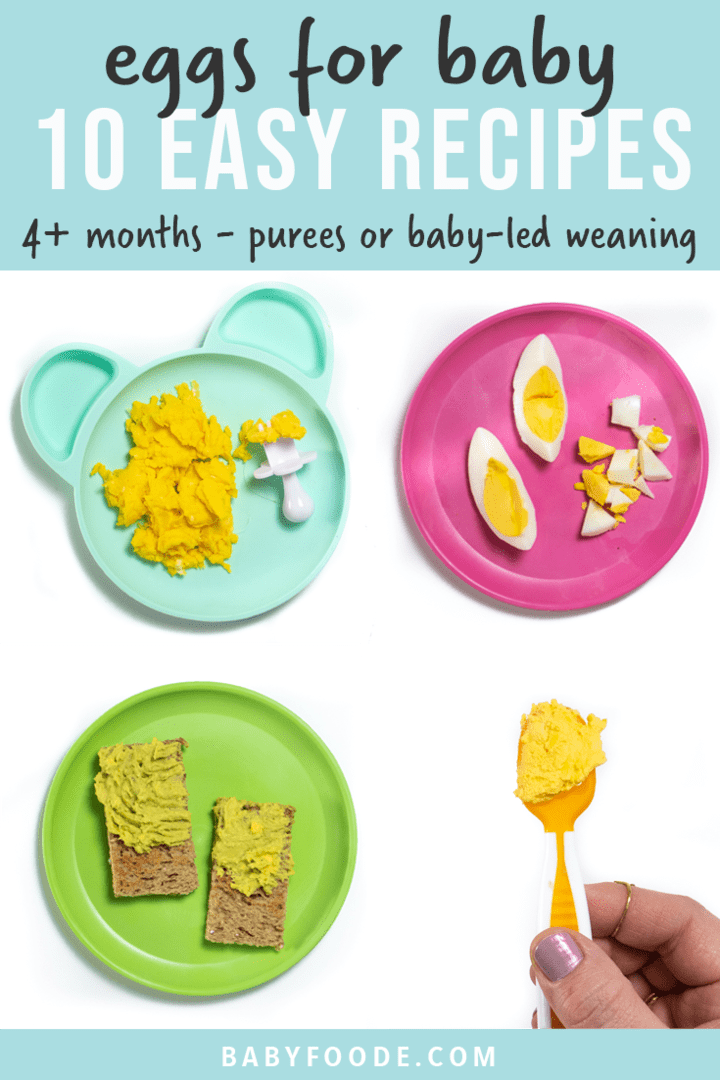 Graphic for post - eggs for baby - 10 easy recipes - 4+ months - purees or baby-led weaning. Images are in a grid of different egg recipes on colorful plates.