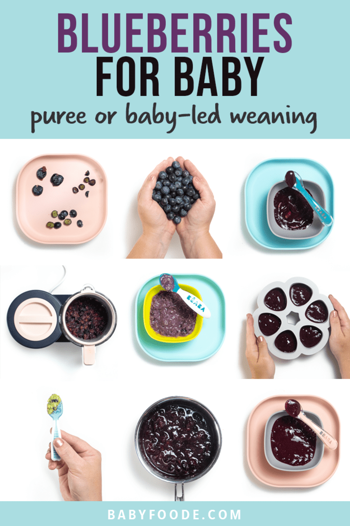 Graphic for post - blueberries for baby - puree and baby led weaning. Images are in a grid of whole blueberries, pureed blueberries and frozen blueberry puree that are all on blue or pink plates.