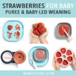 Graphic for post - strawberries for baby - purees or baby-led weaning. Images are in a grid with hands showing off the different foods.