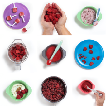 Grid of images with colorful baby plates, bowls and spoons showing raspberry purees, finger foods and spreads.
